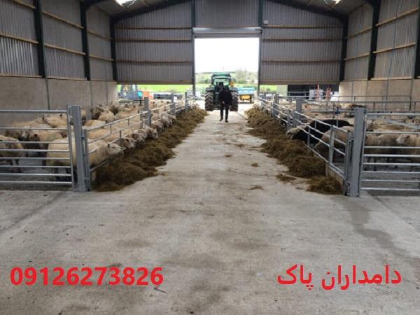 جایگاه برای نگهداری گوسفند